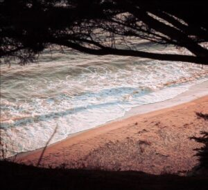 The Best Camping Spots in Santa Barbara